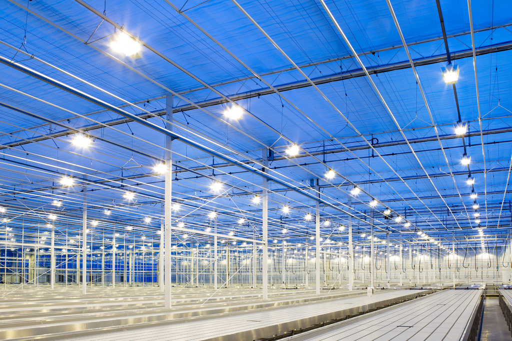 Led Lighting A Cost Conscious And Environmentally Friendly