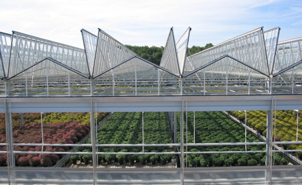 Greenhouse with open vents